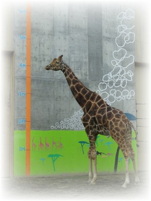 旭山動物園06高坂ホーム
