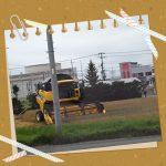 十勝産小麦の収穫風景を窓からʕ·ᴥ·ʔ