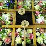 【夏詣】帯廣神社の花手水ʕ·ᴥ·ʔ期間限定の御朱印