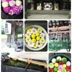 【2020】帯広神社で夏詣ʕ·ᴥ·ʔ花手水を楽しむ!疫病退散-張り子の虎とは